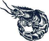 Dibujo de Langostino en negro - Restaurante Balandro